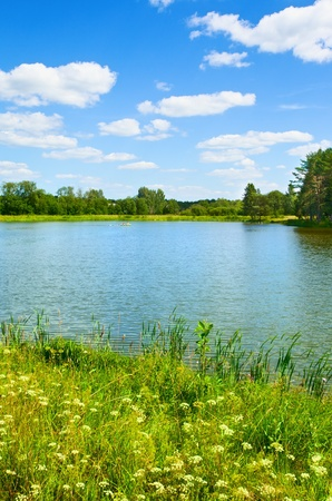 summer landscape with lake and yellow flowers photo
