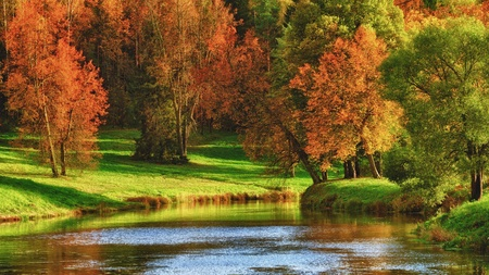 autumn on calm lake at sunny day
