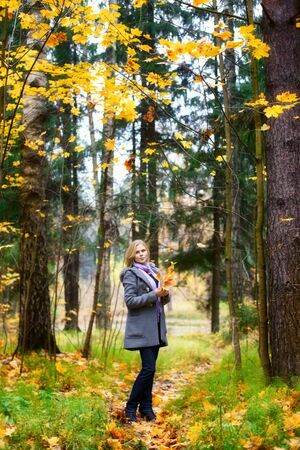 beautiful smiling blond girl in autumn park Stock Photo - 12959568