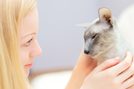 beautiful blond girl playing with cat in a bed photo