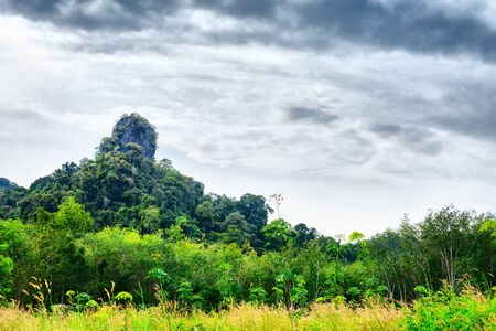 great mountain with green trees in Thailand Stock Photo - 12998238