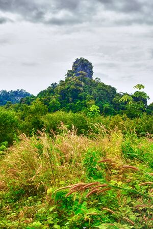 great mountain with green trees in Thailand photo