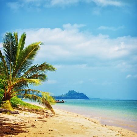 tropical beach with palm, Andaman Sea, Thailand Stock Photo - 13216886