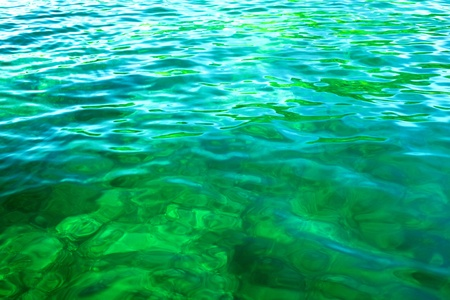 green sea with small waves at sunny day photo
