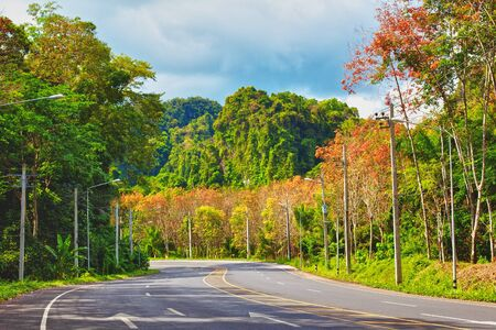 asphalt highway in jungle with mount, Krabi, Thailand Stock Photo - 13216895