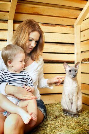 hayloft: madre, el beb� y el gato divertido en el pajar Foto de archivo