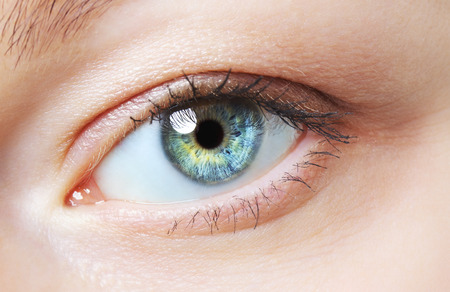 image of human eye, blue and green iris