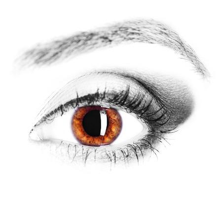 image of human eye, brown iris, close up