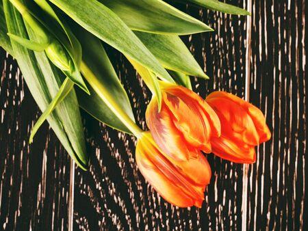 orange tulip flowers bouquet on wooden background