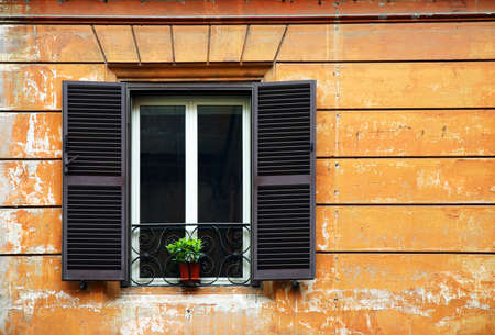 Window with a green plant on old facade photo