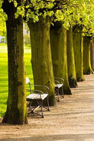 Benches in a public park Stock Photo