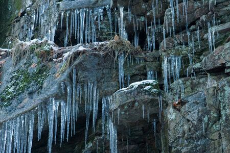 Icicles on a rock wall (Sweden). Stock Photo - 4294222
