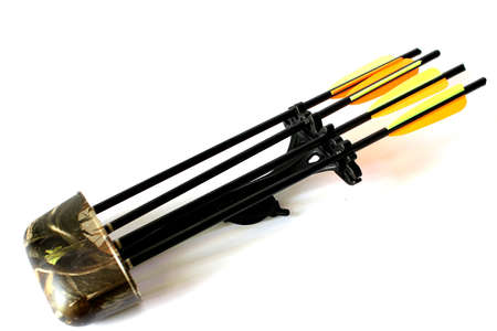 Quiver with Arrows Stock Photo