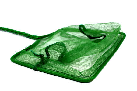 aquaria: Isolated green fish net used for aquariums at home  Stock Photo