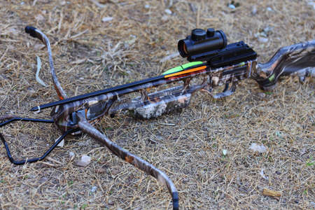 crossbow: A close up view of crossbow and arrow laying on the ground