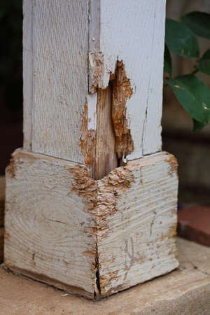 damages: Close up view of termite damage on a outside pillar of a house