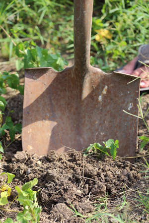 Close up view of someone digging with a shovel