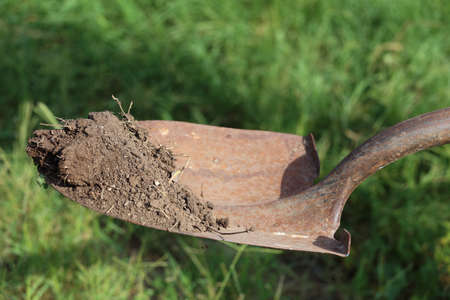 A shovel, or spade, holding up dirt above the ground Stock Photo