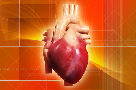 digital illustration of a human heart in digital bckground Stock Photo