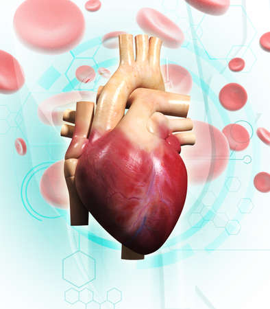 Digital illustration of  human heart  in colour background  Stock Illustration - 14076625
