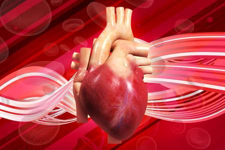 Digital illustration of human heart digital background Reklamní fotografie - 14076834