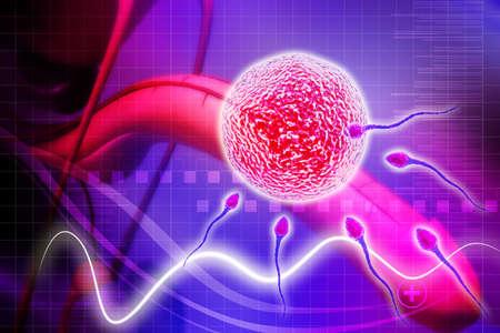 scrotum: sistema riproduttivo maschile in background digitale