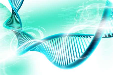genetica: Illustrazione digitale di un dna a sfondo bianco Archivio Fotografico