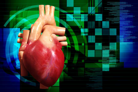 digital illustration of a human heart in colour background illustration