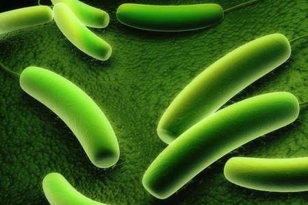 Digital illustration of Coli bacteria in colour background Stock Illustration - 15325140