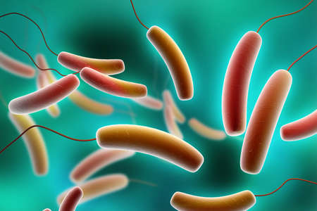 causative: Digital illustration of Coli bacteria in colour background