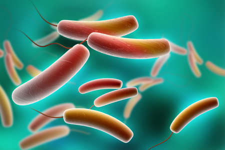 bacillus: Digital illustration of Coli bacteria in colour background