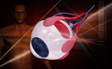 digital illustration of a human eye in white background illustration