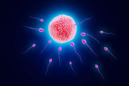 semen: Illustrazione digitale di sperma maschile e dell'ovulo a colori