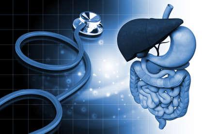 intestin: Illustration num�rique du syst�me digestif humain et st�thoscope en arri�re-plan de couleur Banque d'images