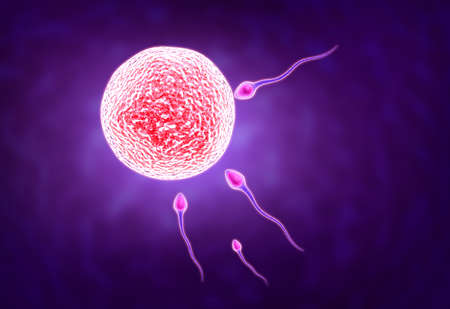sexual reproduction: Digital illustration of sperm in colour background Stock Photo