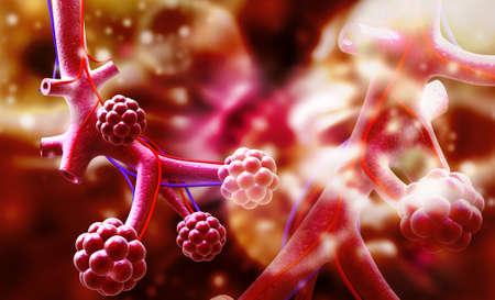 alveolos: Ilustraci�n digital de alv�olos en el fondo digital Foto de archivo