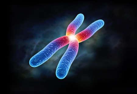 digital illustration of chromosome in digital background