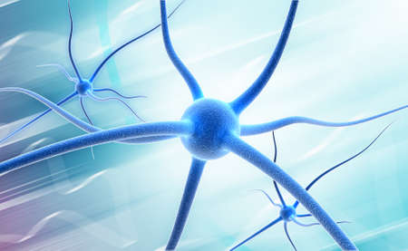 Neuron  Active nerve cell in human neural system Stock Photo