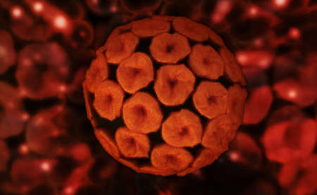 Digital illustration of papilloma virus in colour  Stock Illustration - 24222049