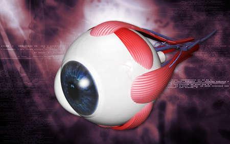 白い背景で人間の目のデジタル イラストレーション 写真素材