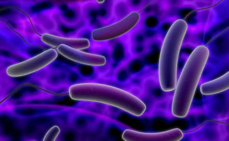 Digital illustration of Coli bacteria in colour background illustration