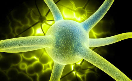 encephalon: digital illustration of a neuron in colour background
