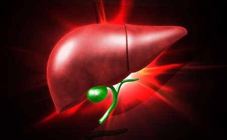 Digital illustration of liver in digital background illustration