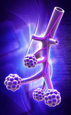 saturating: digital illustration of Alveoli in digital background