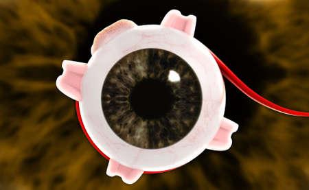 choroid: digital illustration of a Human eye in digital background