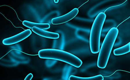 ameba: Ilustraci�n digital de bacterias coli en el fondo de color