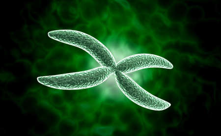digital illustration of Chromosome in digital background Stock Illustration - 27084841