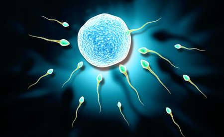 orgasm: Digital illustration of sperm and egg in colour background Stock Photo