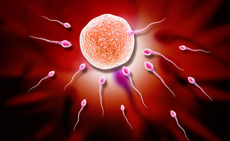 penetration: Digital illustration of sperm and egg in colour background Stock Photo