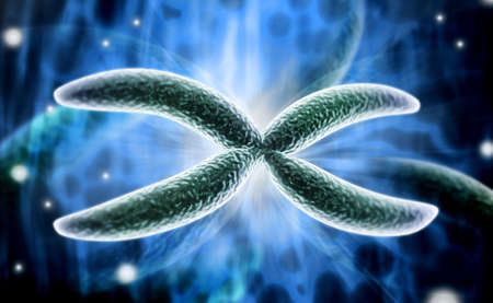 hemophilia: digital illustration of Chromosome in digital background Stock Photo